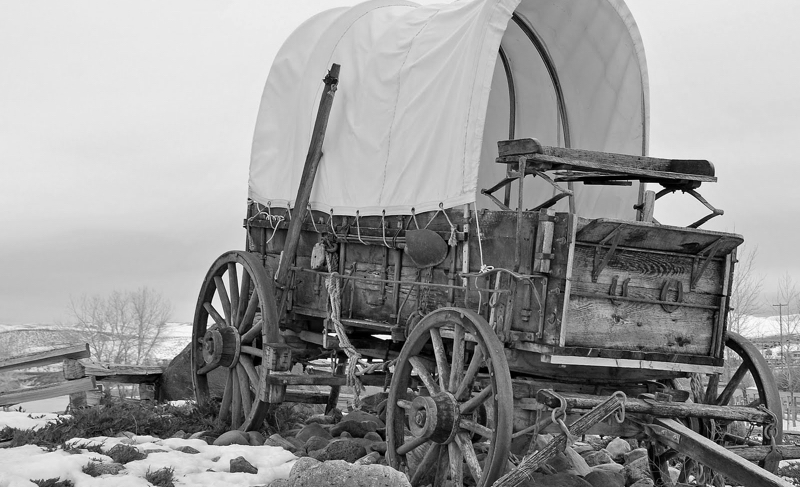 covered_wagon--bw