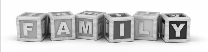 family-building-blocks-banner-bw